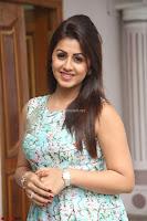 Nikki Galrani at Prema leela pelli gola trailer Launch ~  Exclusive 026.JPG