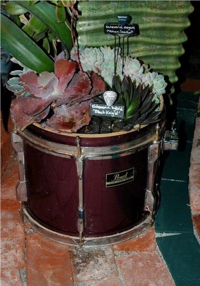 Pot bunga terbuat dari drum bekas.