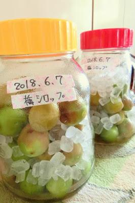 梅ジュース(シロップ)の作り方