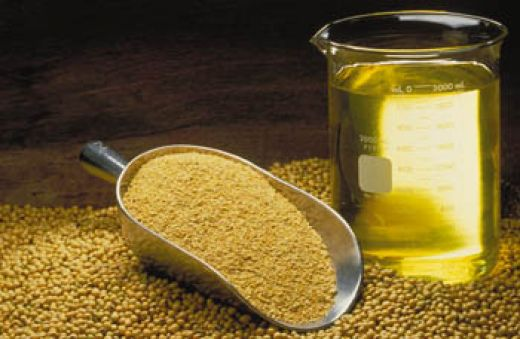 soybean oil for skin