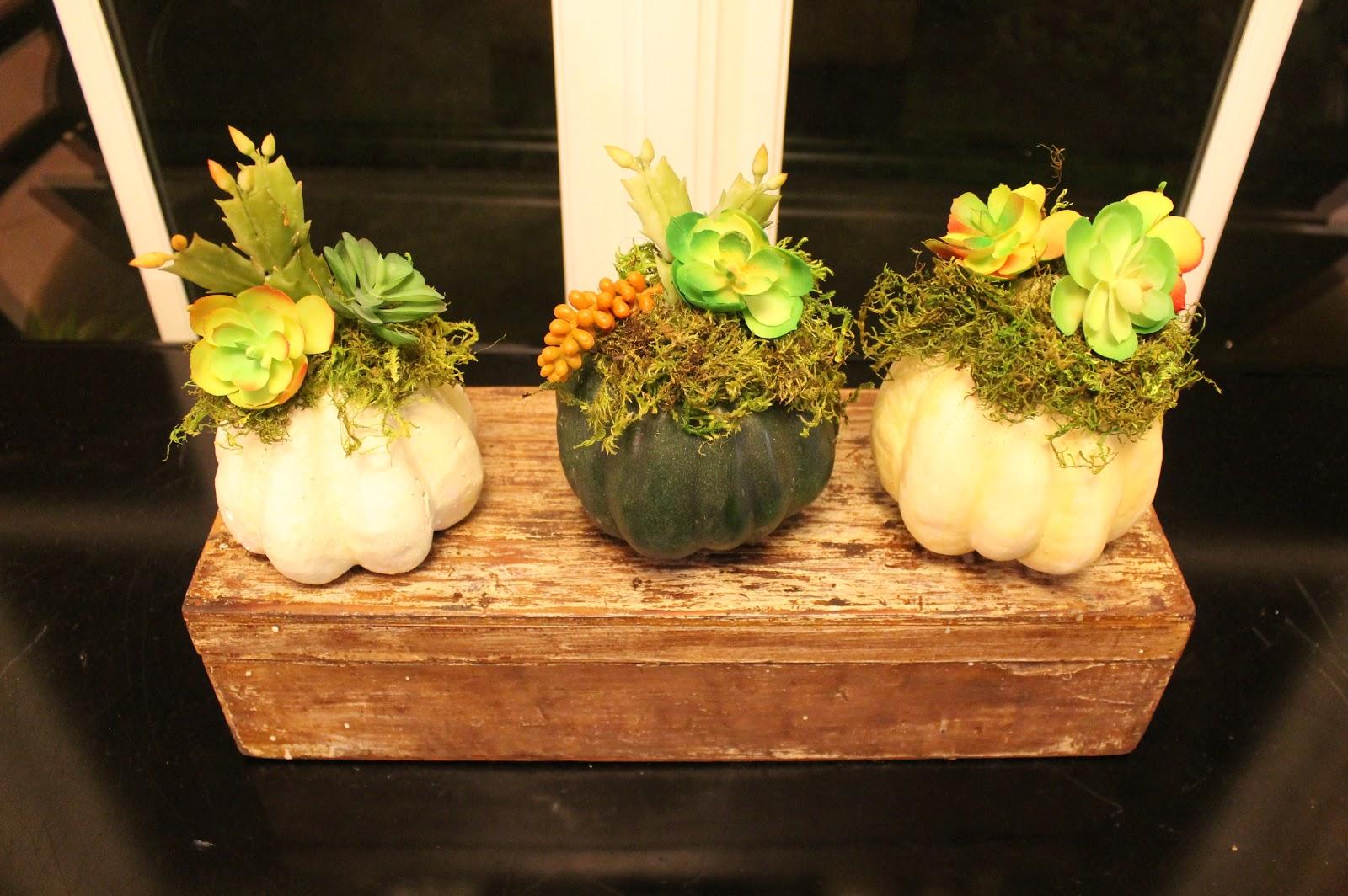 Faux Succulent Pumpkins   Miss Kopy Kat