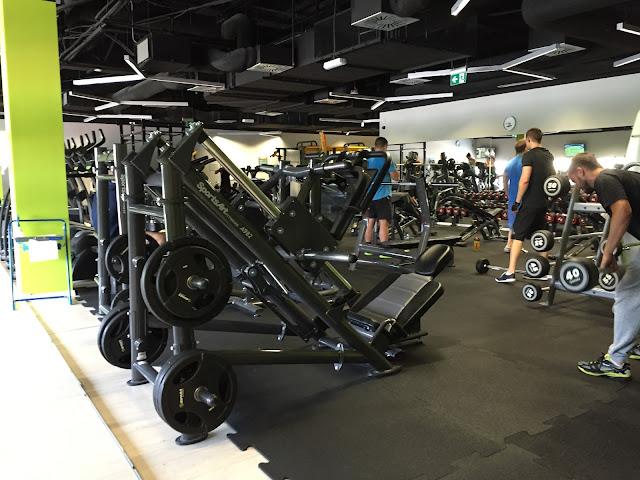 Trójmiejskie siłownie - Calypso Morena