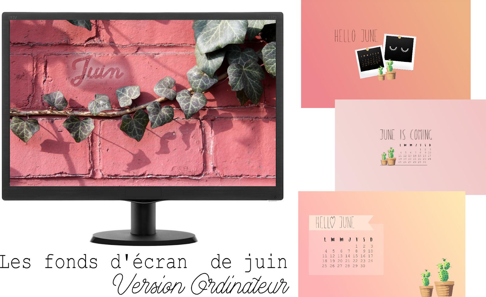 pauline-dress-blog-mode-deco-lifestyle-besancon-fond-d-ecran-juin-cactus-lierre-rose-2018-01