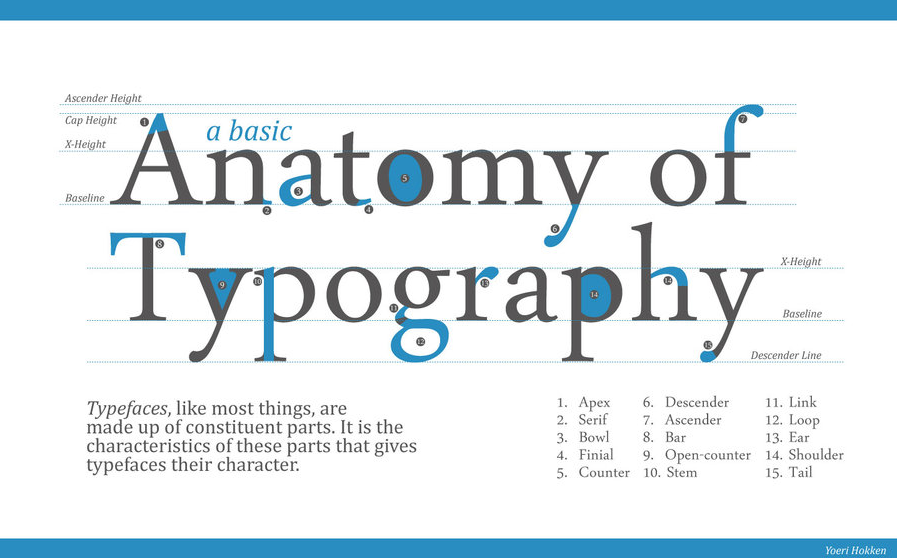 Design Practice: Typography Workshop // Anatomy of Type
