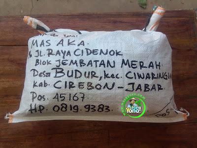 Benih pesanan MAS AKA Cirebon, Jabar  (Setelah Packing)