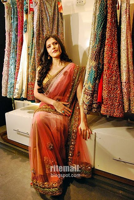 Fashion Move Style  Tips Zarine Khan In Saree-2161