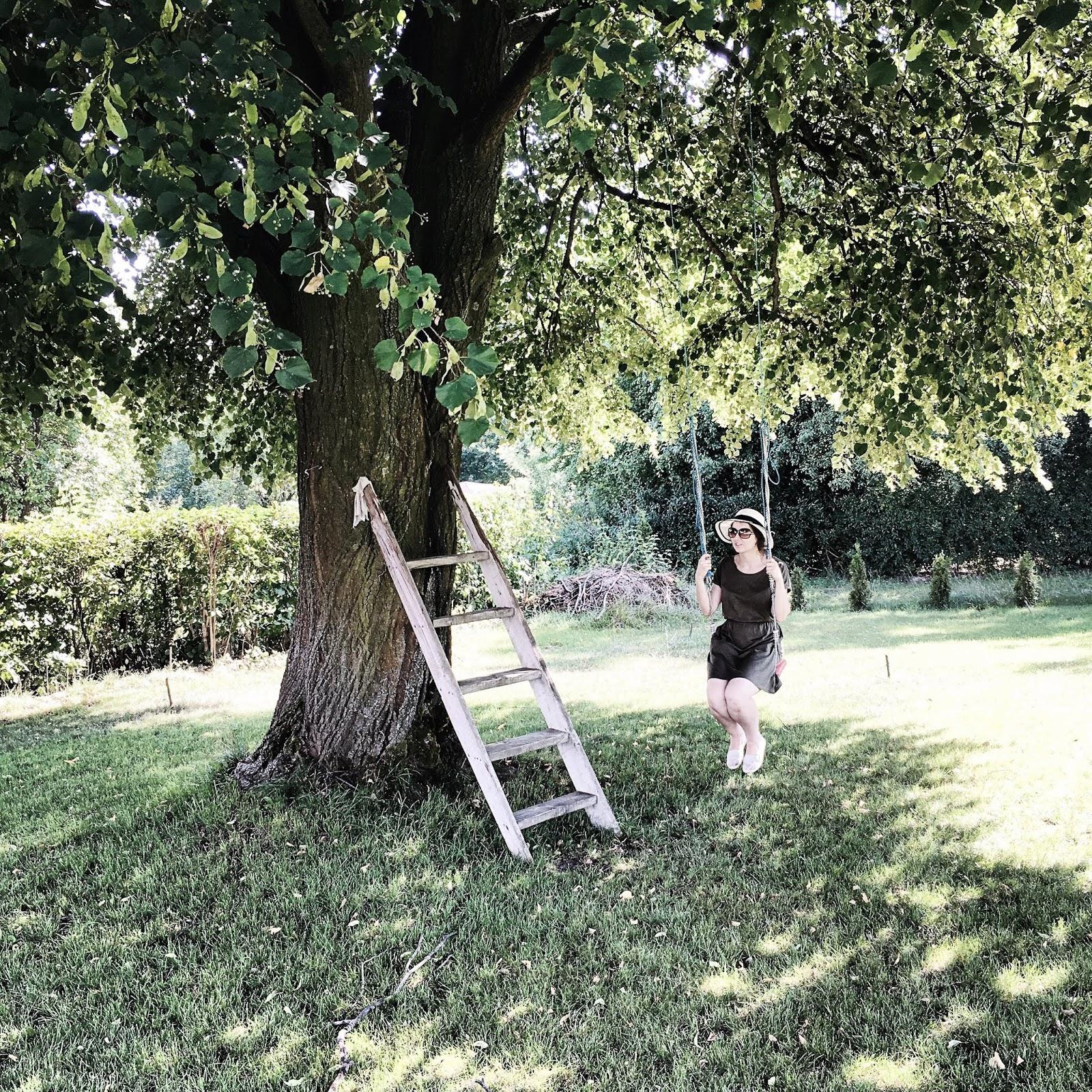 huśtawka na wsi pod starym dużym drzewem