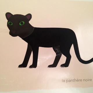 Mon imagier des couleurs à toucher - la panthère noire -  Editions MILAN