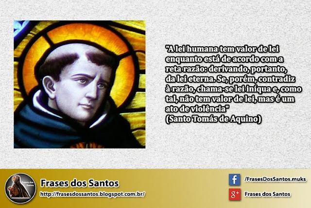 Frases Dos Santos: São Domingos De Gusmão