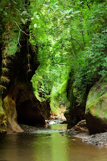 rio viejo gorge