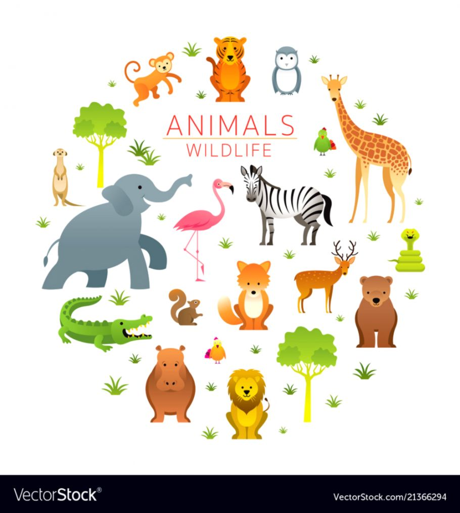 Group Of Zoo Animals Clipart | Tatoo Pictures Ideas