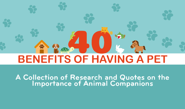 Benefits of Having a Pet