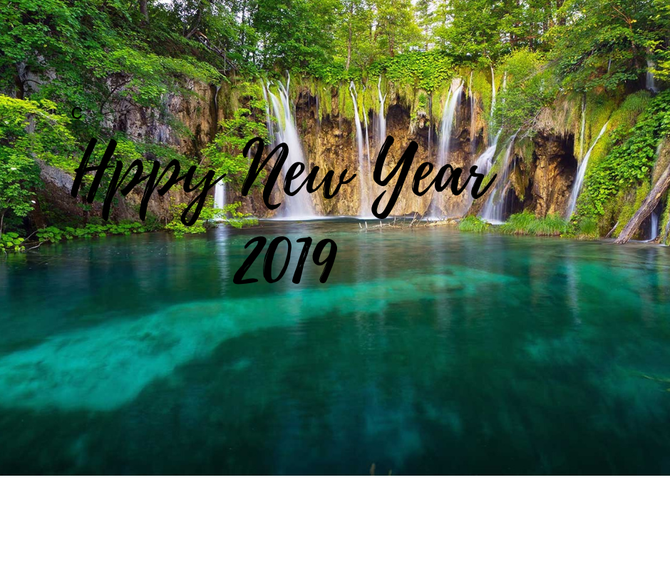 Happy New Year Nature 41