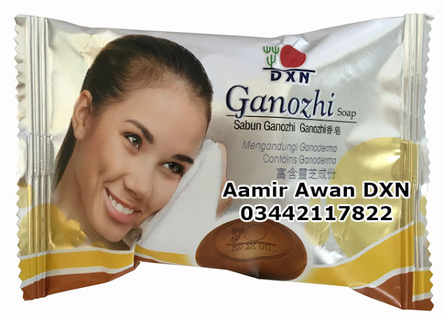 Ganoderma Soap