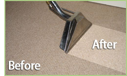 http://carpetcleaningin-houstontx.com/professional-cleaning-services/green-cleaning.jpg