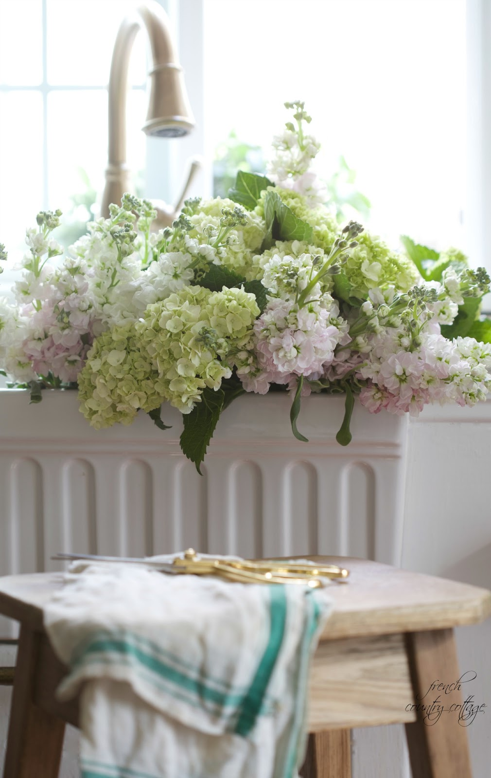 hydrangeas, fresh, kitchen, sink