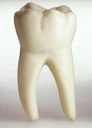 Est-ce que les radiographies dentaires sont scuritaires