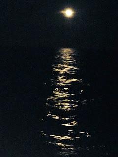 Panacea Moon