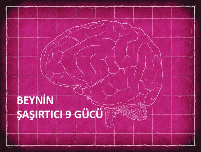[Resim: brain-1845941_640.jpg]