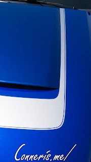 Ford Mustang Hood Stripes