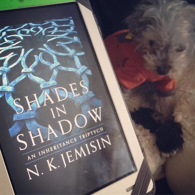 A very blurry Murchie sits behind a white Kobo with the cover of Shades In Shadow on it. Murchie wears his orange t-shirt. The cover features a heavy, circular piece of ironwork.
