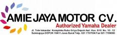Lowongan Kerja Accounting Staff di Amie Jaya Motor