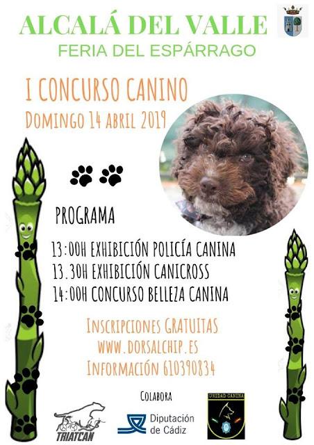 Cartel I concurso canino, Feria del Espárrago en Alcalá del Valle