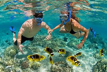 Những địa điểm lặn ngắm san hô tuyệt đẹp ở Đà Nẵng Bai-viet-kinh-nghiem-du-lich-cua-lao-cham-32041643-kinh-nghiem-du-lich-cua-lao-cham-4