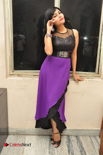 Telugu Actress Rachana Smith Stills at Money is Honey Audio Release  0061.jpg