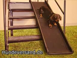 escadas externas para cães
