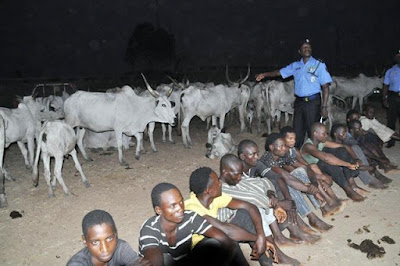 Six cattle rustlers nabbed while sharing meat in forest