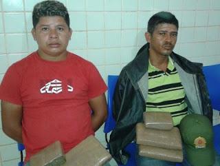 POLÍCIAS CIVIL E MILITAR APREENDEM MAIS DE 30 QUILOS DE MACONHA EM TUCURUÍ E BREU BRANCO