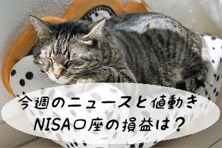 今週のニュースと値動き NISA口座の損益は?
