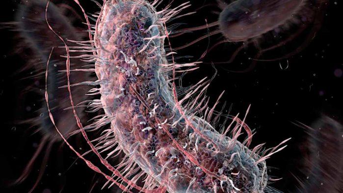 علماء يقتربون من إعادة تشكيل شفرة الحياة الوراثية