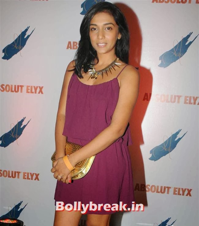 Shweta Salve, Narayani Shastri, Pria Kataria Puri, others at Absolut Elyx Party
