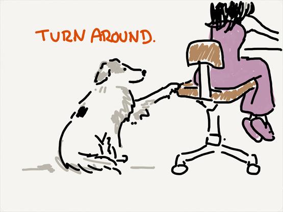 dogs asks turn around