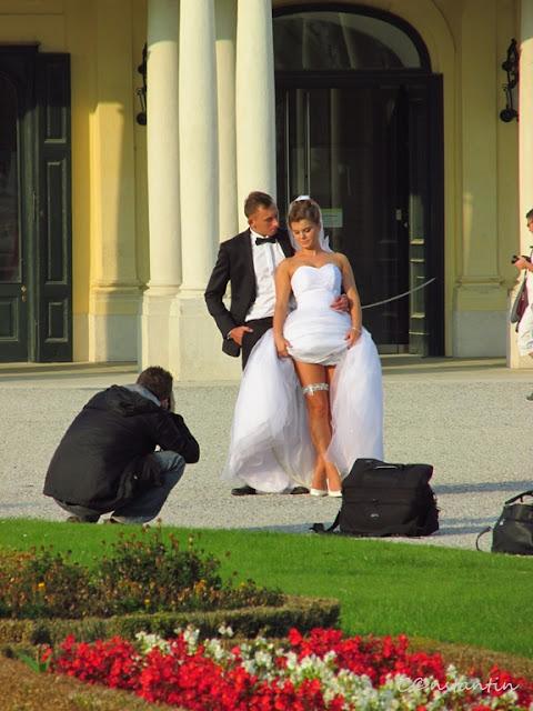 Palatul Schonbrun - fotografi la datorie, stilul european- blog Foto-Ideea
