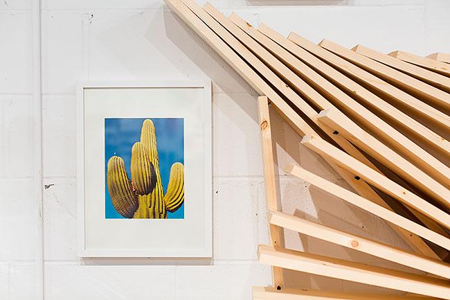 Cactus Wall Art Ideas
