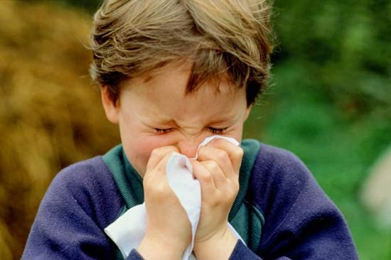 thummal, mooku adaipu, mookkil neer vadithal, sinusitis, mandaiyil neer korthal allergic rhinitis, dust allergy, thusu allergy best treatment hospital in chennai, tamilnadu, india