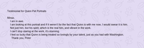 Testimonial Quinn Pet Portraits 2018