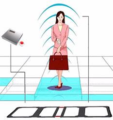 隱藏式地板防盜系統,埋地型防盜系統,聲磁,LY-AM10