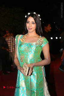 Actress Sanjjanaa Stills in Green Long Dress at Gemini TV Puraskaralu 2016 Event  0039.JPG