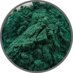 biolite inqa, biolite kiens, anti aging, anti aging herbal, cordycep, khasiat cordycep, manfaat cordycep, obat kuat truman, truman kiens, suplemen truman,