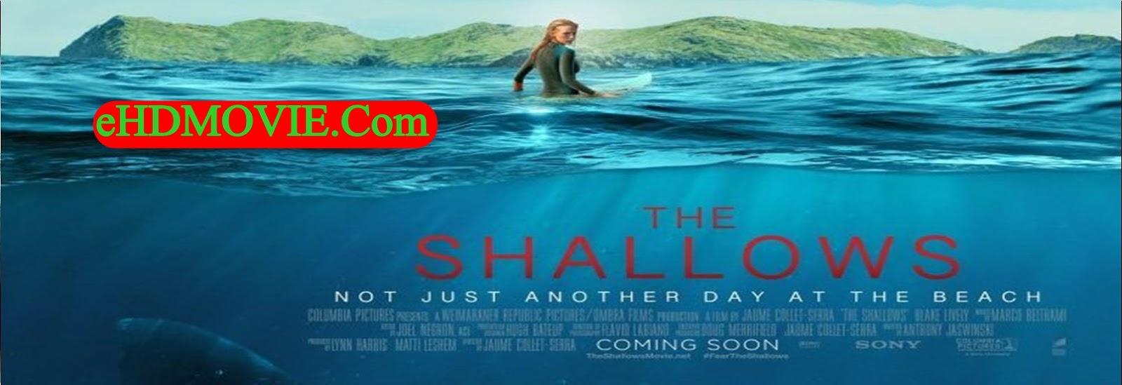 The Shallows 2016 Full Movie Dual Audio [Hindi – English] 1080p - 720p - 480p ORG BRRip 300MB - 900MB - 1.6GB ESubs Free Download