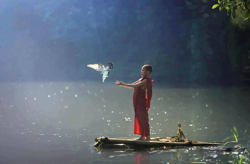 Resultado de imagem para O silêncio      Onde quer que vc esteja, seja a alma deste lugar...