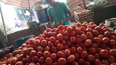 تراجع أسعار الطماطم بأسواق الجملة.. والكيلو   150 قرشا