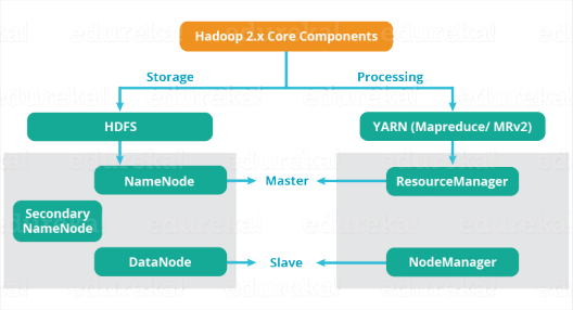 Architecture and components of Hadoop