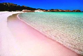 tempat-wisata-Pantai-pasir-pink-yang-unik-dan-indah