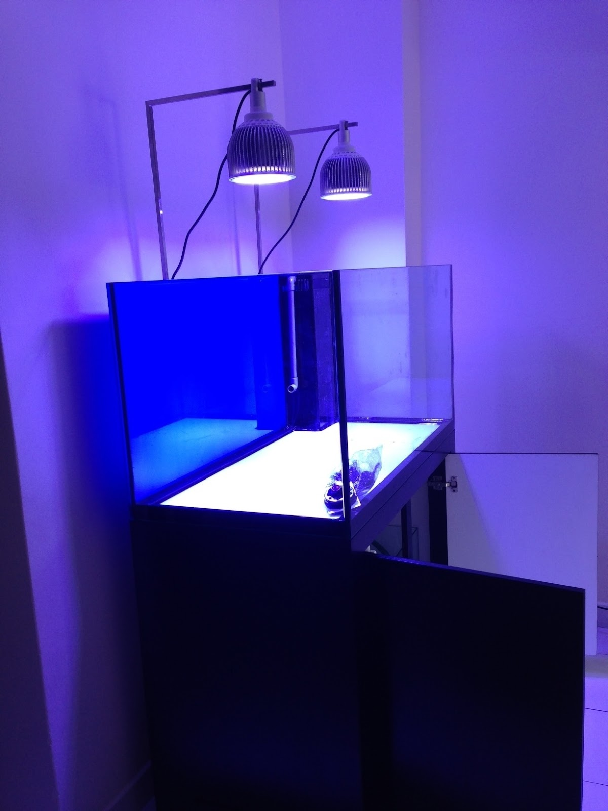 Led Aquarium Lighting Blog Orphek Impressive Monti