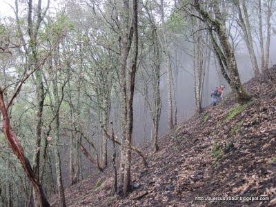 12 - A pocos cientos de metros de las explanadas de Cerro Viejo